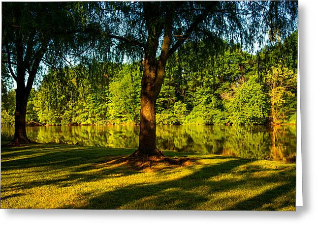 Blue And Green Greeting Cards - Summer Light Greeting Card by Karol  Livote