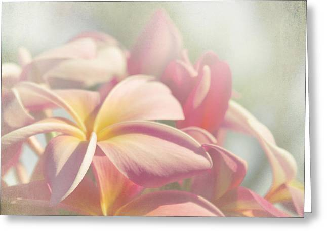 Pink Photography Greeting Cards - Summer Love Greeting Card by Sharon Mau