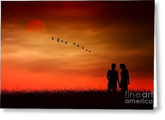 Flock Of Geese Greeting Cards - Summer Love Greeting Card by Tom York Images
