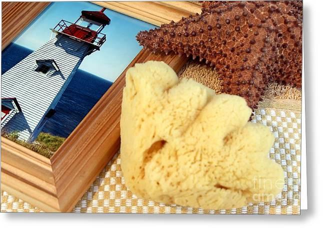 Aquatic Display Greeting Cards - Summer Memories Greeting Card by Sophie Vigneault