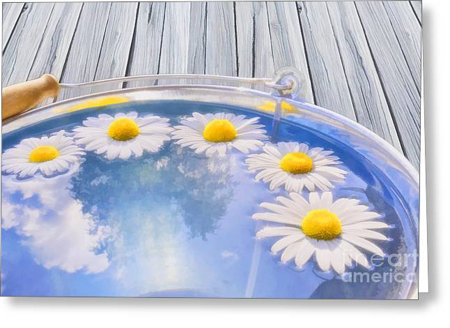 Daisy Digital Greeting Cards - Summer memories Greeting Card by Veikko Suikkanen