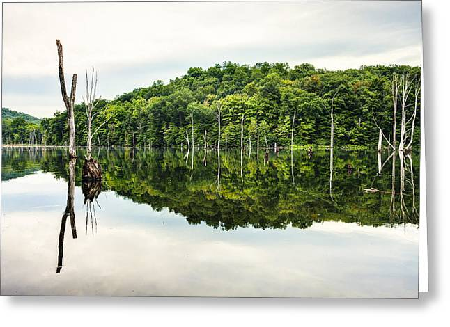 Reflection On Pond Greeting Cards - Summer Morning on Monksville Reservoir 2 Greeting Card by Gary Heller
