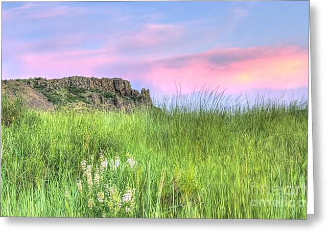 Cliffs Photographs Greeting Cards - Summer Night in the Foothills Greeting Card by Juli Scalzi