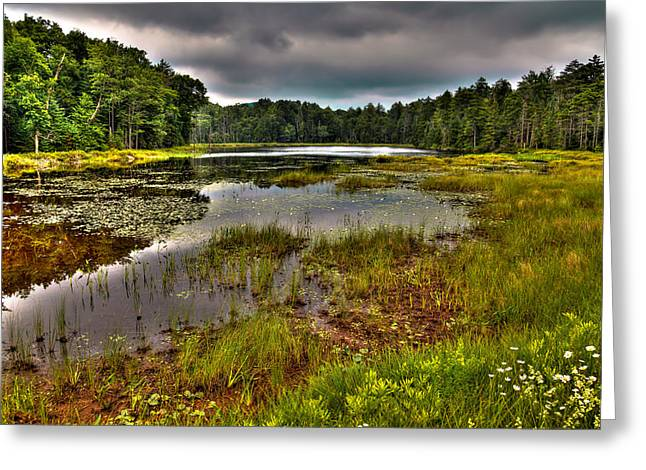 Lush Green Greeting Cards - Summer on Fly Pond - Old Forge Greeting Card by David Patterson