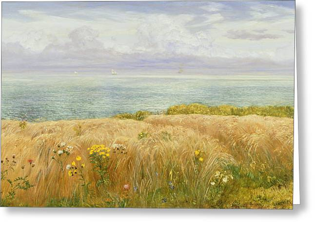 Summer On The Cliffs Greeting Card by John Brett