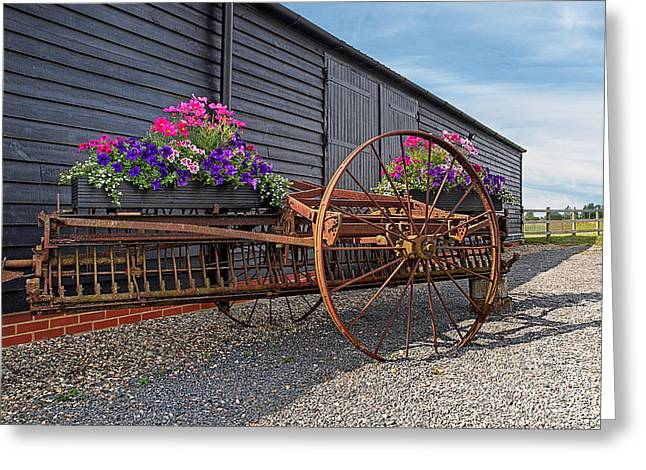 Summer On The Farm Greeting Cards - Summer on the Farm Greeting Card by Gill Billington