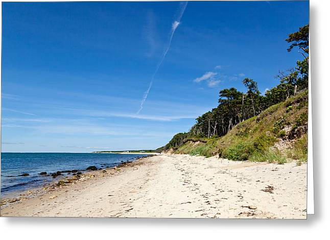Sea Grasses On Sand Dunes Greeting Cards - Summer on The Vineyard Greeting Card by Michelle Wiarda