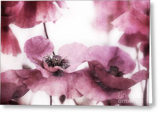 Decorative Floral Greeting Cards - Summer Greeting Card by Priska Wettstein