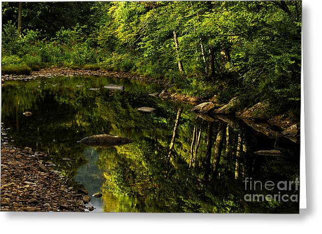 Summer Reflections Greeting Card by Thomas R Fletcher