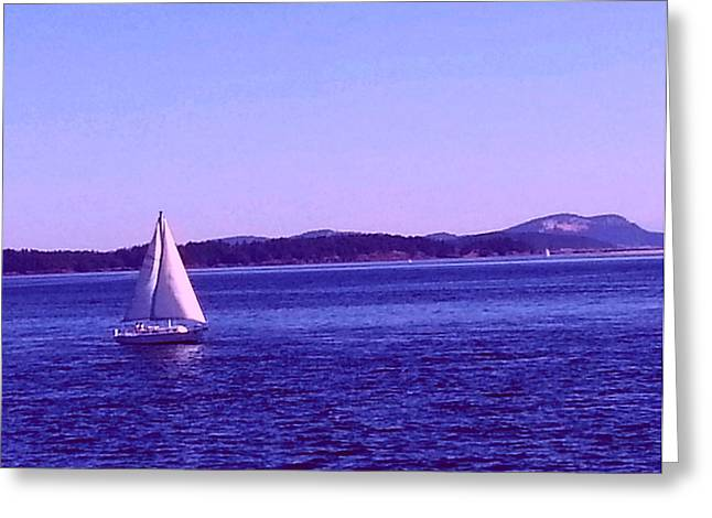 Photogrpah Greeting Cards - Summer Sail Greeting Card by Nikki Dalton