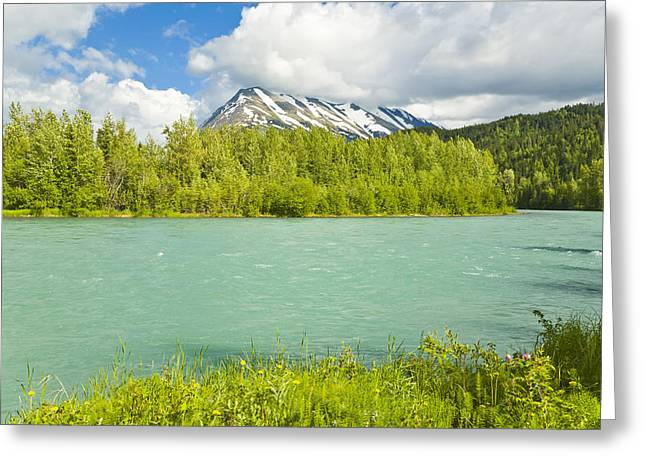 Summer Scenic Of Upper Kenai River Near Greeting Card by Michael DeYoung