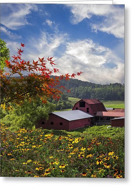 Tennessee Barn Greeting Cards - Summer Skies Greeting Card by Debra and Dave Vanderlaan