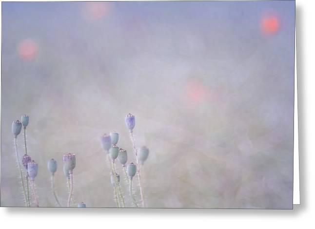 Himmel Greeting Cards - Summer sky Greeting Card by Uma Wirth