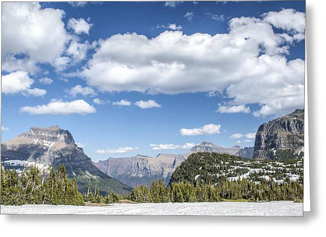 Collection Greeting Cards - Summer Snow Greeting Card by Jon Glaser