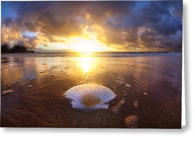 Ocean Images Greeting Cards - Summer Solstice Greeting Card by Sean Davey