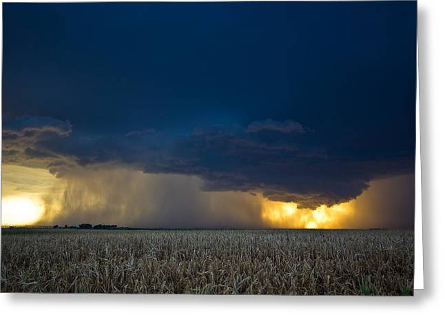 Summer Storm  Greeting Card by Brandon  Ivey