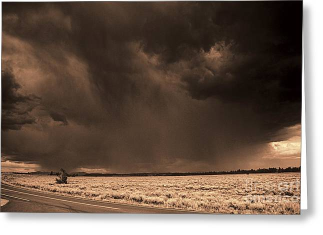 Summer Squall Greeting Cards - Summer Storm Greeting Card by Brenton Cooper