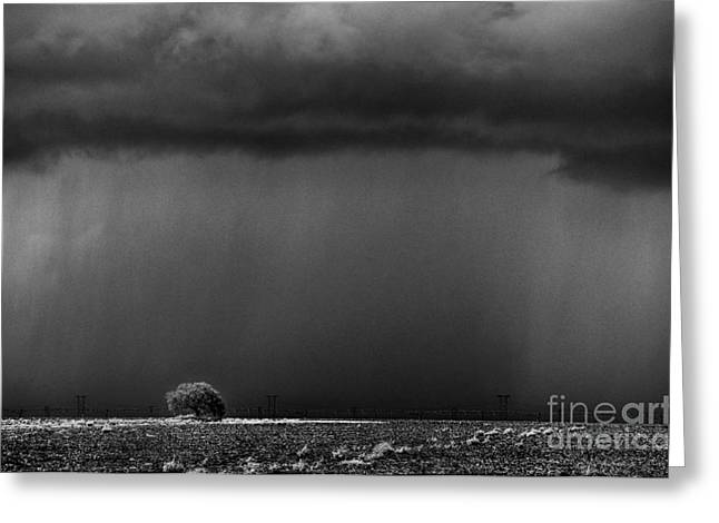 Ken Williams Greeting Cards - Summer Storm Greeting Card by Ken Williams