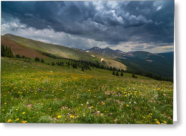 Great Greeting Cards - Summer Storm Greeting Card by Michael J Bauer