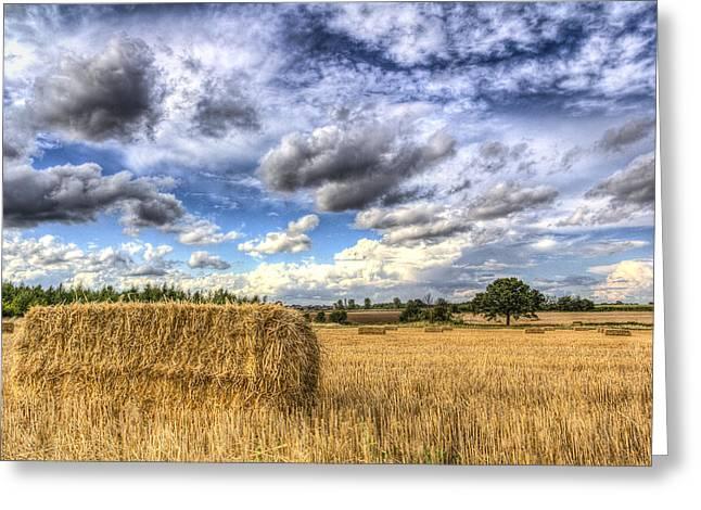 Making Hay Greeting Cards - Summer Straw Bales Greeting Card by David Pyatt