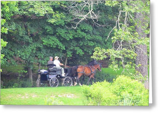Horse And Buggy Greeting Cards - Summer Stroll Greeting Card by Elizabeth Dow