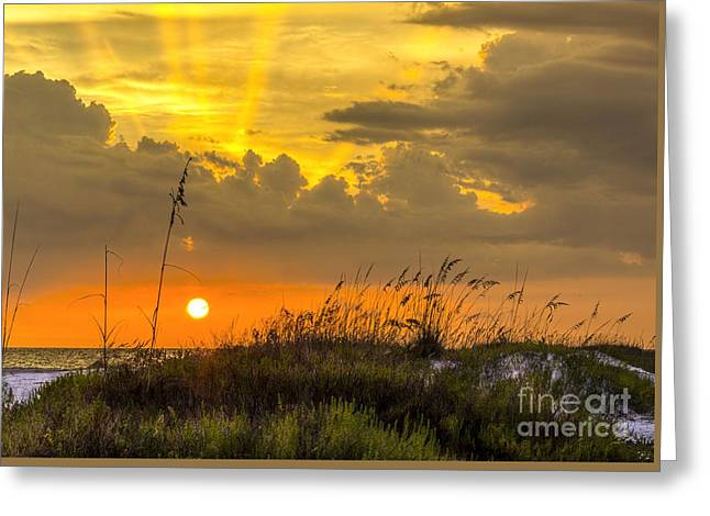 Sea Oats Photographs Greeting Cards - Summer Sun Greeting Card by Marvin Spates