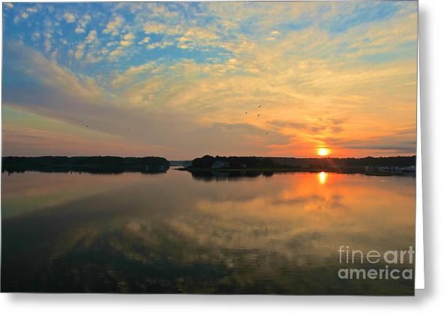 Amazing Jules Greeting Cards - Summer Sunrise Greeting Card by Amazing Jules