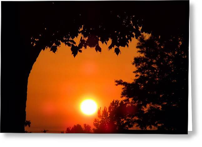 Central Il Greeting Cards - Summer Sunrise Right Side Greeting Card by Thomas Woolworth