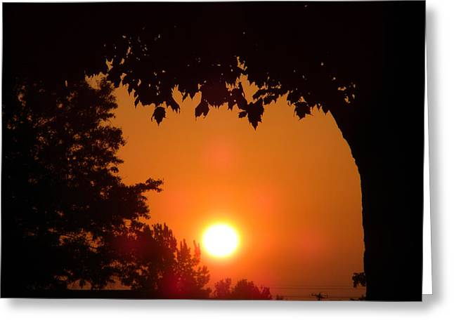 Central Il Greeting Cards - Summer Sunrise Greeting Card by Thomas Woolworth