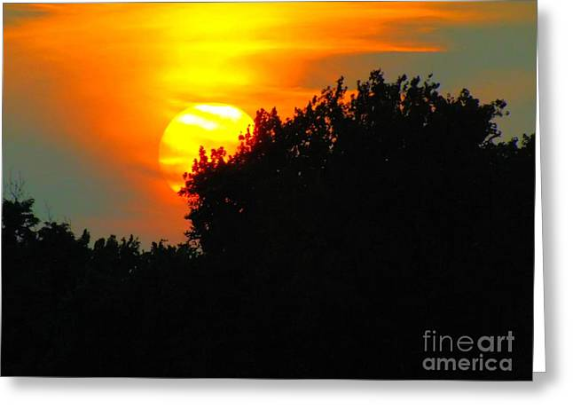 Uplifting Greeting Cards - Summer Sunset #3 Greeting Card by Robyn King