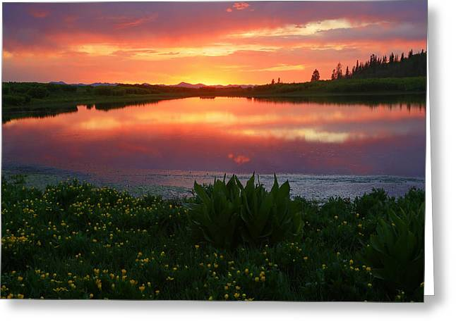 Rugged Mountains Greeting Cards - Summer Sunset above Lake Creek. Greeting Card by Johnny Adolphson