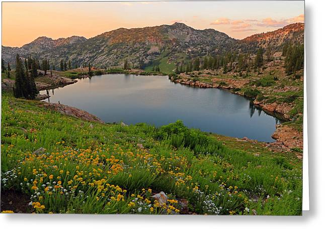 Little Cottonwood Canyon Greeting Cards - Summer sunset at Cecret lake. Greeting Card by Johnny Adolphson