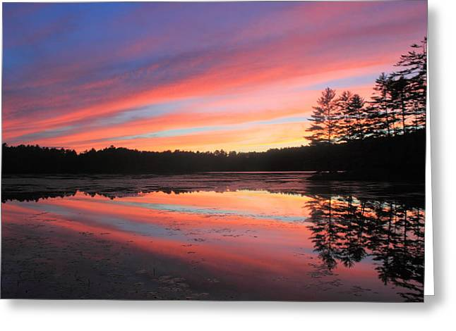 Summer Sunset At Potapaug Pond Quabbin Reservoir Greeting Card by John Burk