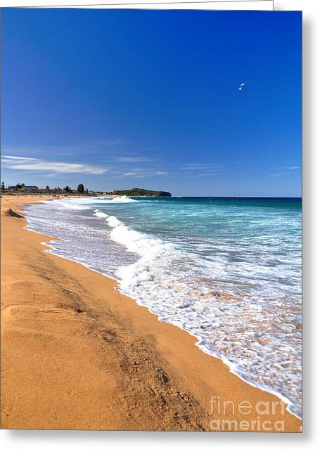 Breaking Surf Greeting Cards - Summer Sunshine at the Beach Greeting Card by Kaye Menner