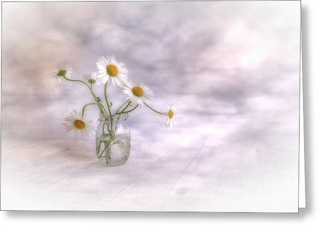Daisy Digital Greeting Cards - Summer time Greeting Card by Veikko Suikkanen