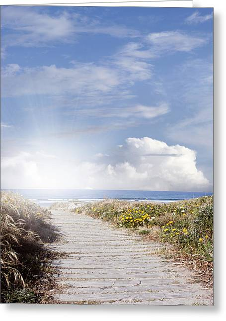 Beach Scenery Greeting Cards - Summer trail Greeting Card by Les Cunliffe