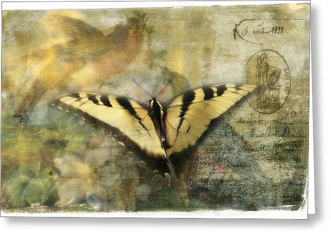 Graphics Framed Prints Greeting Cards - Summer Visitors Greeting Card by Melinda Dreyer
