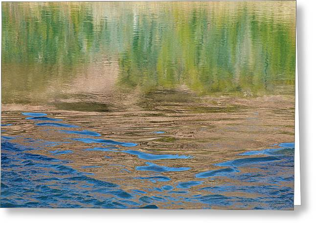 Chama River Greeting Cards - Summer Water Reflection Greeting Card by Britt Runyon