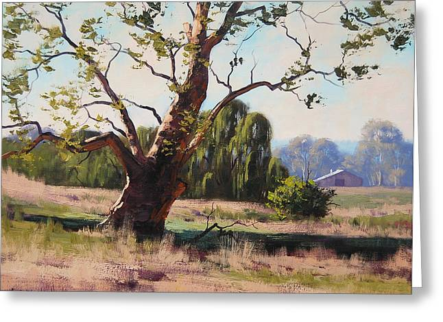 Summer Willow Greeting Card by Graham Gercken
