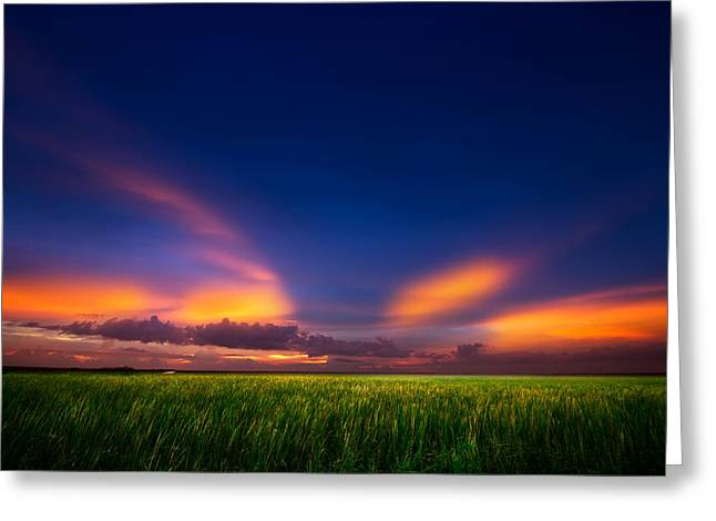 Summer Wind Greeting Card by Mark Andrew Thomas