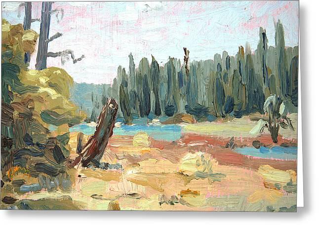 Fishing Creek Greeting Cards -  Bear Stump Greeting Card by John Matthew