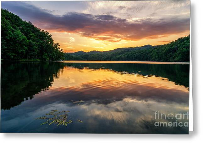 Crank Greeting Cards - Summers Beauty Greeting Card by Anthony Heflin