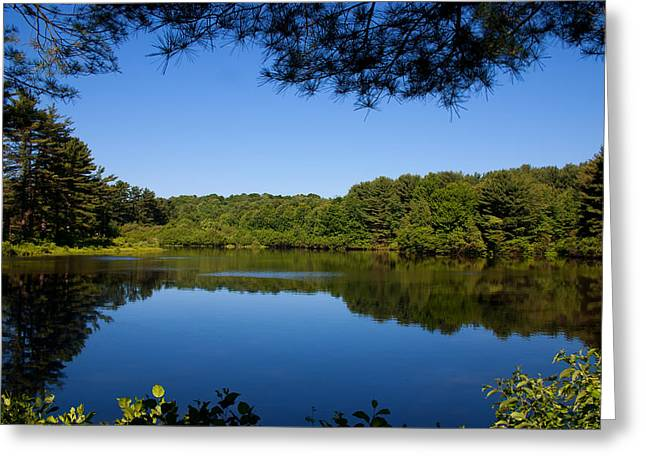 Summers Blue View Greeting Card by Karol Livote