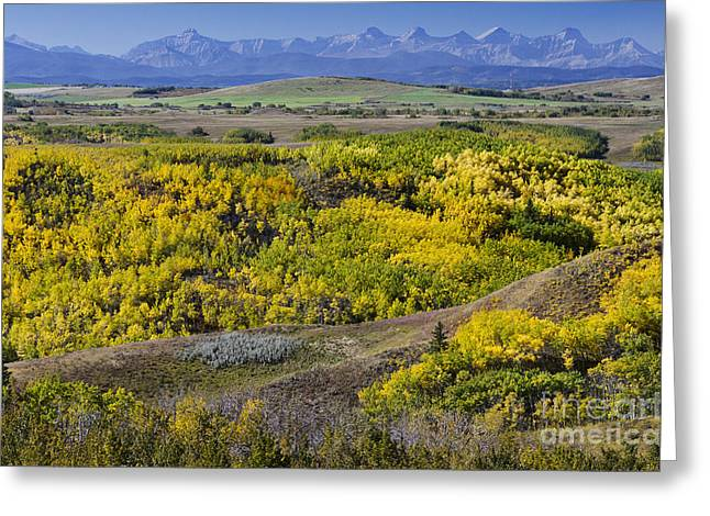 Canadian Foothills Landscape Greeting Cards - Summers Colourful Conclusion Greeting Card by Dee Cresswell