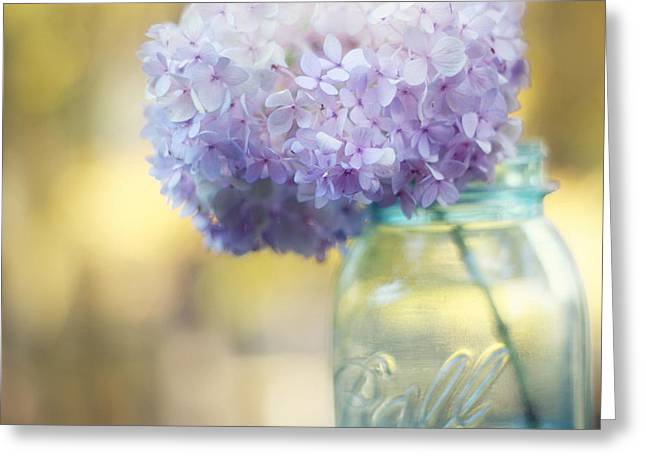 Dreamy Photographs Greeting Cards - Summers End Greeting Card by Amy Tyler