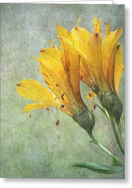 Enhanced Greeting Cards - Summers End Greeting Card by Angie Vogel