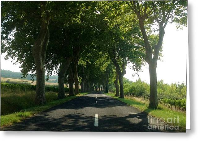 Wine Country Greeting Cards - Summers Shade Greeting Card by France  Art