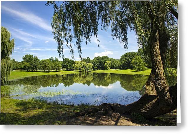 Willow Lake Greeting Cards - Summertime At Otsiningo Park Greeting Card by Christina Rollo
