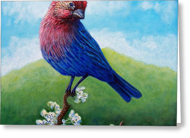 Finch Greeting Cards - Summertime Greeting Card by Brian  Commerford