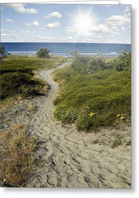 Beach Scenery Greeting Cards - Summertime walk Greeting Card by Les Cunliffe